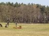 baltic-hills-golfen-mv-2010-12