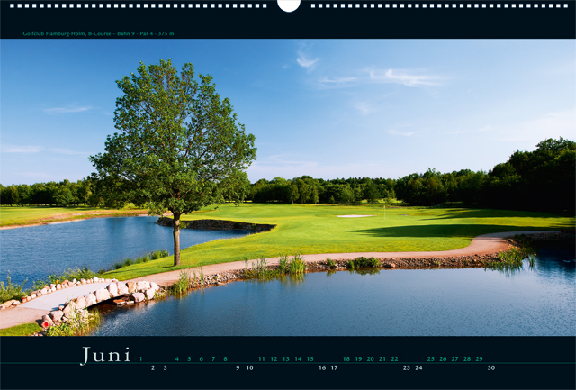 06_golf2012