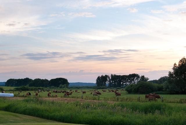 12. Sunset Golf MV  - Schloss Teschow