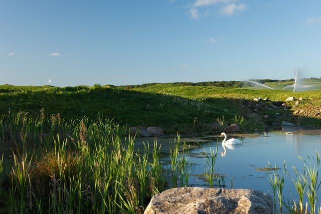 wittenbeck golf und Natur