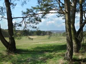 Baltic Hills Golf Usedom - Blick auf den Gothensee