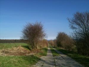 Golfclub Sassnitz - Weg zum Clubhaus