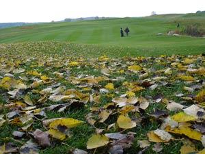 golf-saisonabschluss-golfen-mv-17