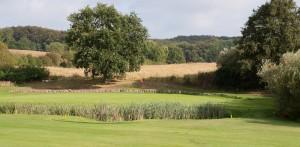 golfplatz-tessin (1 von 1)