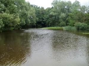 Nach sinflutartigem Regen ist der Golfplatz in Tessin gesperrt